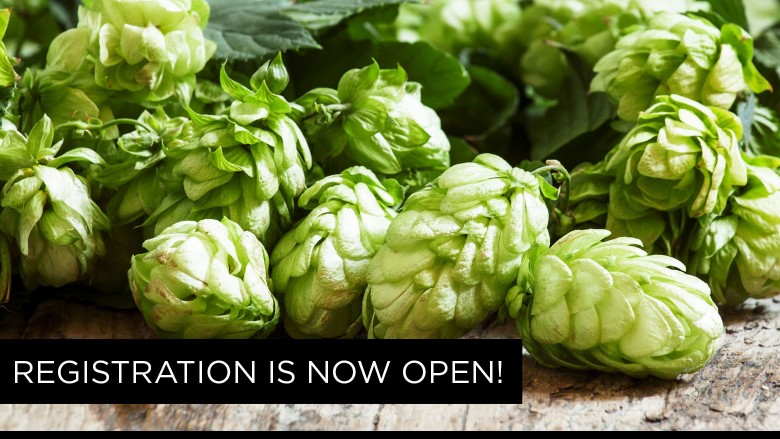 Registration is now open for the 2017 The Dude's Homebrew Competition in Buffalo, NY